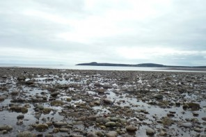 Bay of Fundy, New Brunswick