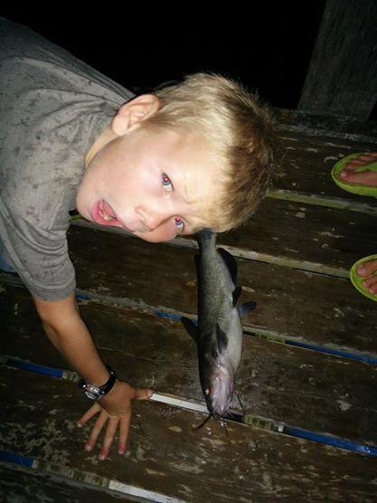 owlrowdycatfish