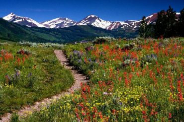 You might want to read up on all the Things you Need to Know Before Visiting Colorado.